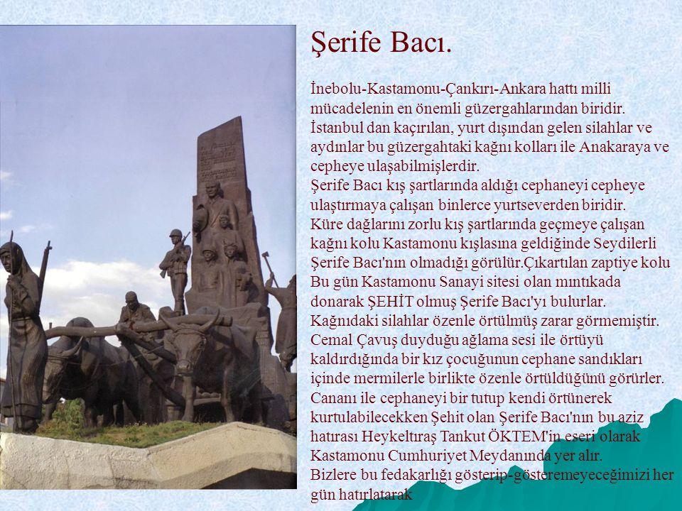 Şerife Bacı. İnebolu-Kastamonu-Çankırı-Ankara hattı milli mücadelenin en önemli güzergahlarından biridir. İstanbul dan kaçırılan, yurt dışından gelen