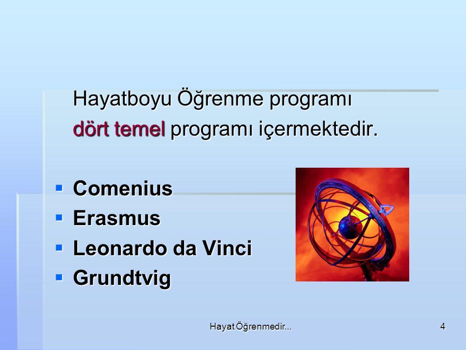 Hayat Öğrenmedir...4 Hayatboyu Öğrenme programı dört temel programı içermektedir.