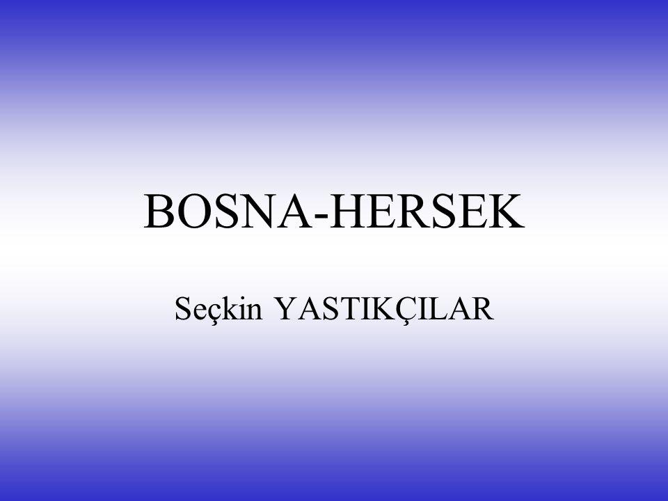 BOSNA-HERSEK Seçkin YASTIKÇILAR