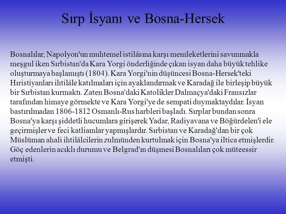 Sırp İsyanı ve Bosna-Hersek Bosnalılar, Napolyon un muhtemel istilâsına karşı memleketlerini savunmakla meşgul iken Sırbistan da Kara Yorgi önderliğinde çıkan isyan daha büyük tehlike oluşturmaya başlamıştı (1804).