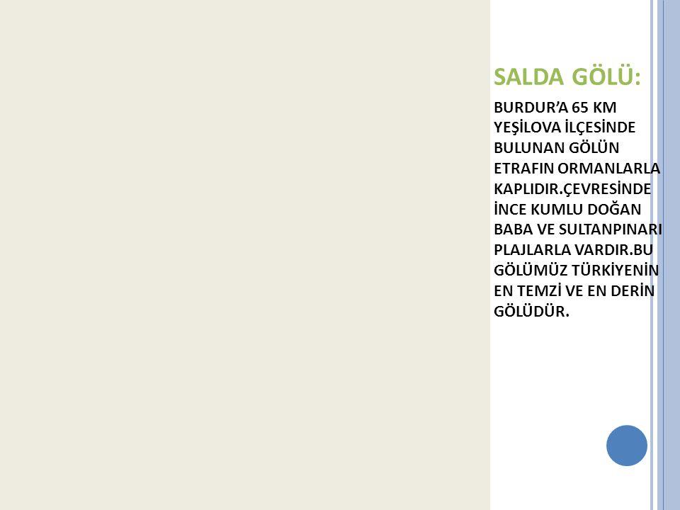 SALDA GÖLÜ: BURDUR'A 65 KM YEŞİLOVA İLÇESİNDE BULUNAN GÖLÜN ETRAFIN ORMANLARLA KAPLIDIR.ÇEVRESİNDE İNCE KUMLU DOĞAN BABA VE SULTANPINARI PLAJLARLA VAR