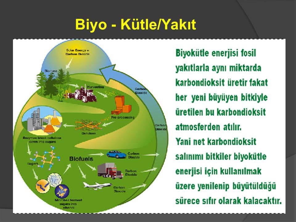 Biyo - Kütle/Yakıt