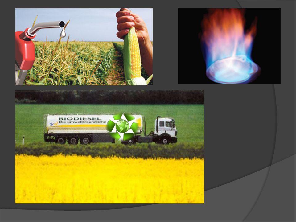 Biyogaz Organik bazlı atık/artıkların oksijensiz ortamda (anaeorobik) fermantasyonu sonucu ortaya çıkan renksiz - kokusuz, havadan hafif, parlak mavi bir alevle yanan ve bileşimininde organik maddelerin bileşimine bağlı olarak yaklaşık; % 40-70 metan, % 30-60 karbondioksit, % 0-3 hidrojen sülfür ile çok az miktarda azot ve hidrojen bulunan bir gaz karışımdır.