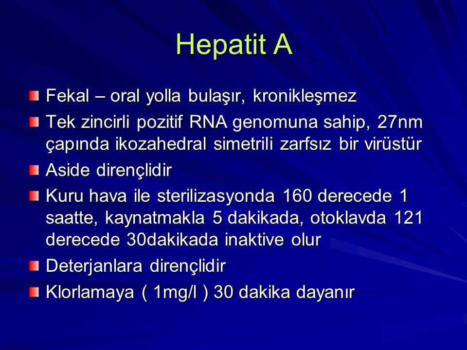 Hepatit A Fekal – oral yolla bulaşır, kronikleşmez Tek zincirli pozitif RNA genomuna sahip, 27nm çapında ikozahedral simetrili zarfsız bir virüstür As