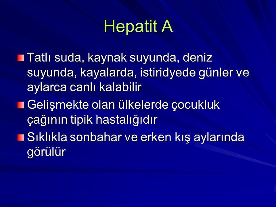 Hepatit A Tatlı suda, kaynak suyunda, deniz suyunda, kayalarda, istiridyede günler ve aylarca canlı kalabilir Gelişmekte olan ülkelerde çocukluk çağın