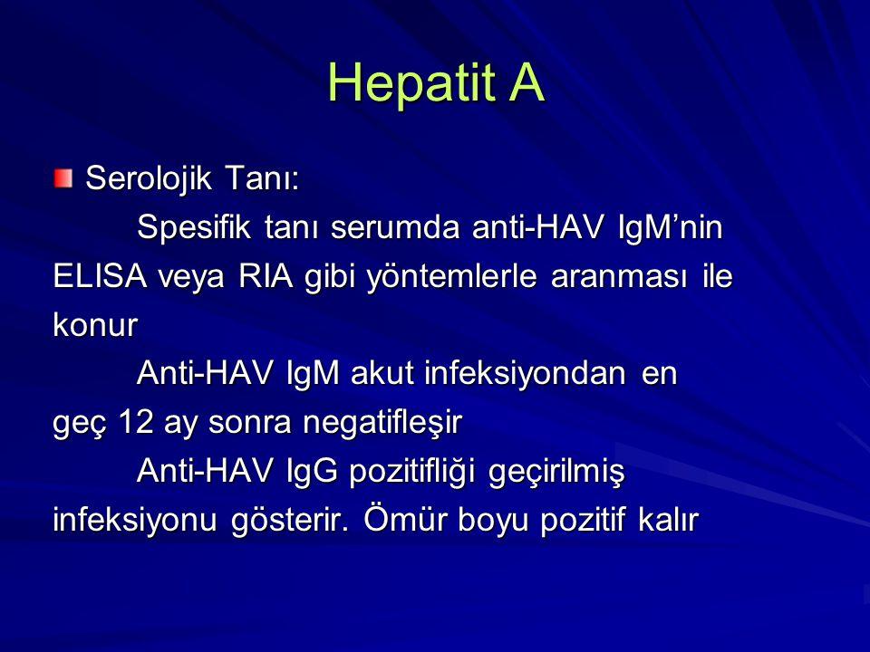 Hepatit A Serolojik Tanı: Spesifik tanı serumda anti-HAV IgM'nin Spesifik tanı serumda anti-HAV IgM'nin ELISA veya RIA gibi yöntemlerle aranması ile k