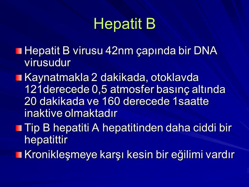 Hepatit B Hepatit B virusu 42nm çapında bir DNA virusudur Kaynatmakla 2 dakikada, otoklavda 121derecede 0,5 atmosfer basınç altında 20 dakikada ve 160