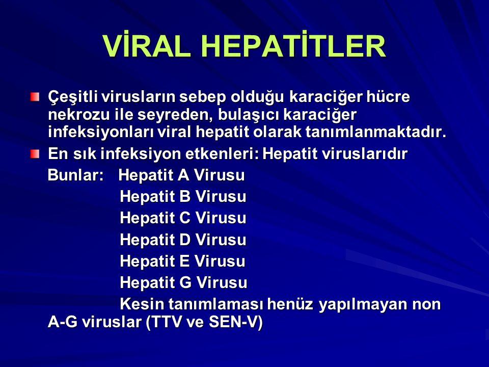 VİRAL HEPATİTLER Çeşitli virusların sebep olduğu karaciğer hücre nekrozu ile seyreden, bulaşıcı karaciğer infeksiyonları viral hepatit olarak tanımlan