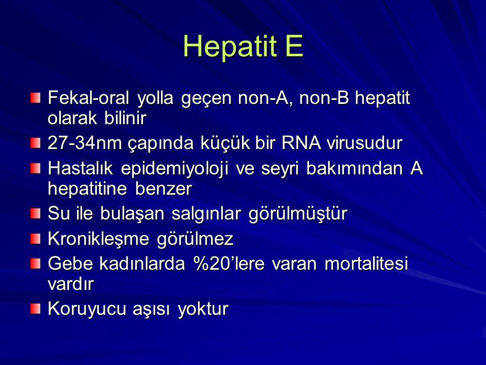 Hepatit E Fekal-oral yolla geçen non-A, non-B hepatit olarak bilinir 27-34nm çapında küçük bir RNA virusudur Hastalık epidemiyoloji ve seyri bakımında