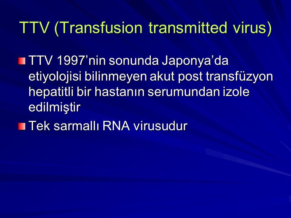 TTV (Transfusion transmitted virus) TTV 1997'nin sonunda Japonya'da etiyolojisi bilinmeyen akut post transfüzyon hepatitli bir hastanın serumundan izo