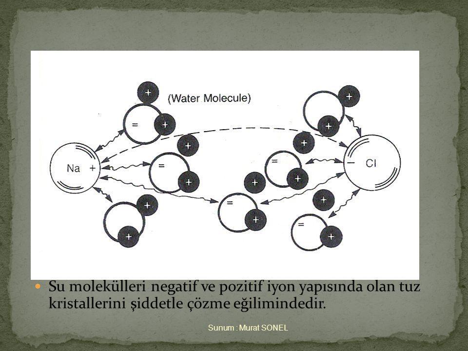  Su molekülleri negatif ve pozitif iyon yapısında olan tuz kristallerini şiddetle çözme eğilimindedir.
