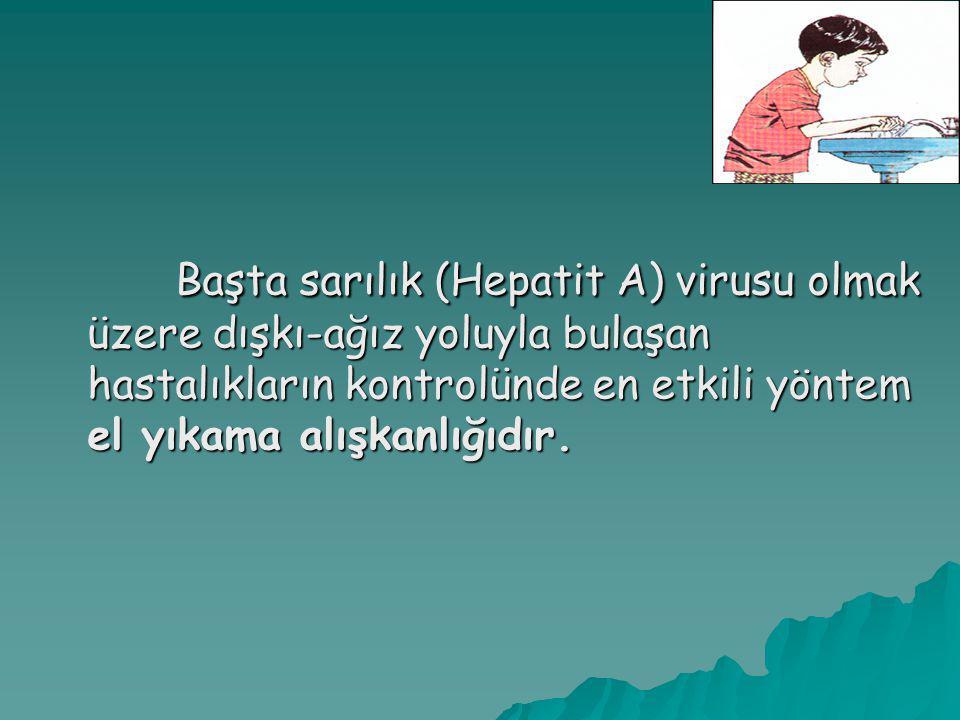 Başta sarılık (Hepatit A) virusu olmak üzere dışkı-ağız yoluyla bulaşan hastalıkların kontrolünde en etkili yöntem el yıkama alışkanlığıdır. Başta sar