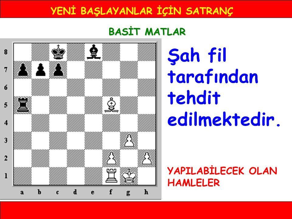 YENİ BAŞLAYANLAR İÇİN SATRANÇ BASİT MATLAR MERDİVEN MATI 4.