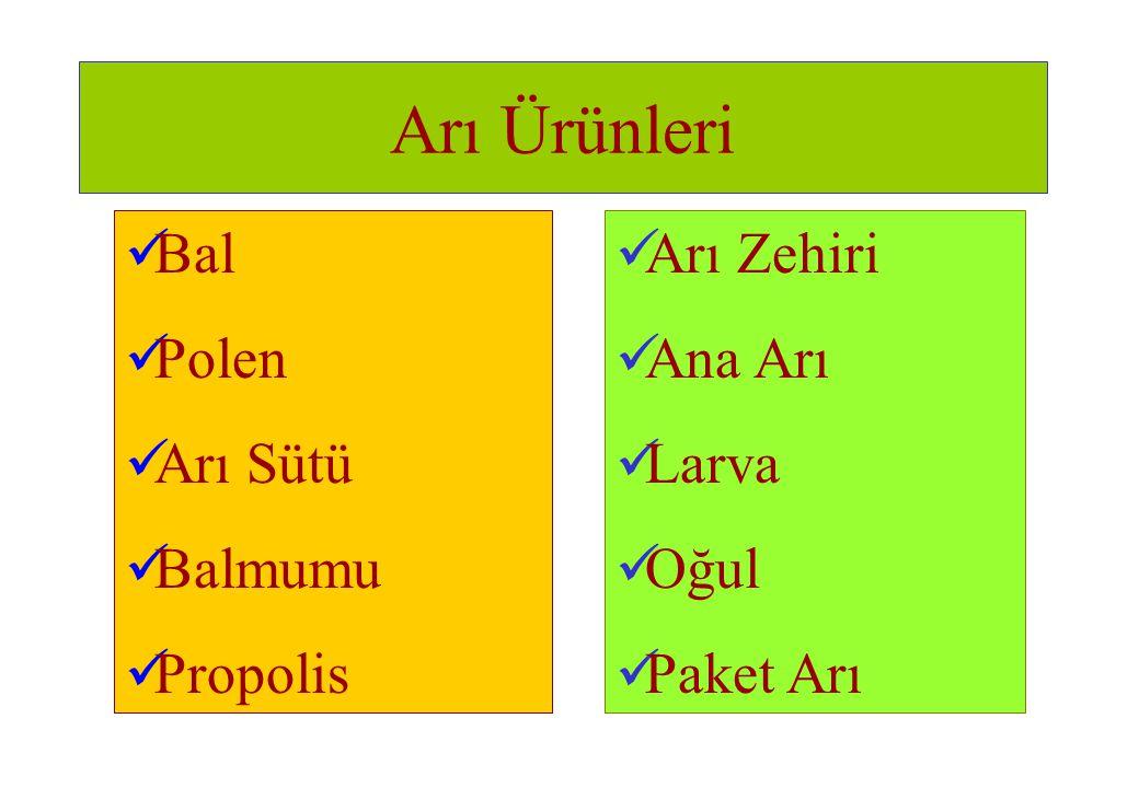 Arı Ürünleri  Bal  Polen  Arı Sütü  Balmumu  Propolis  Arı Zehiri  Ana Arı  Larva  Oğul  Paket Arı