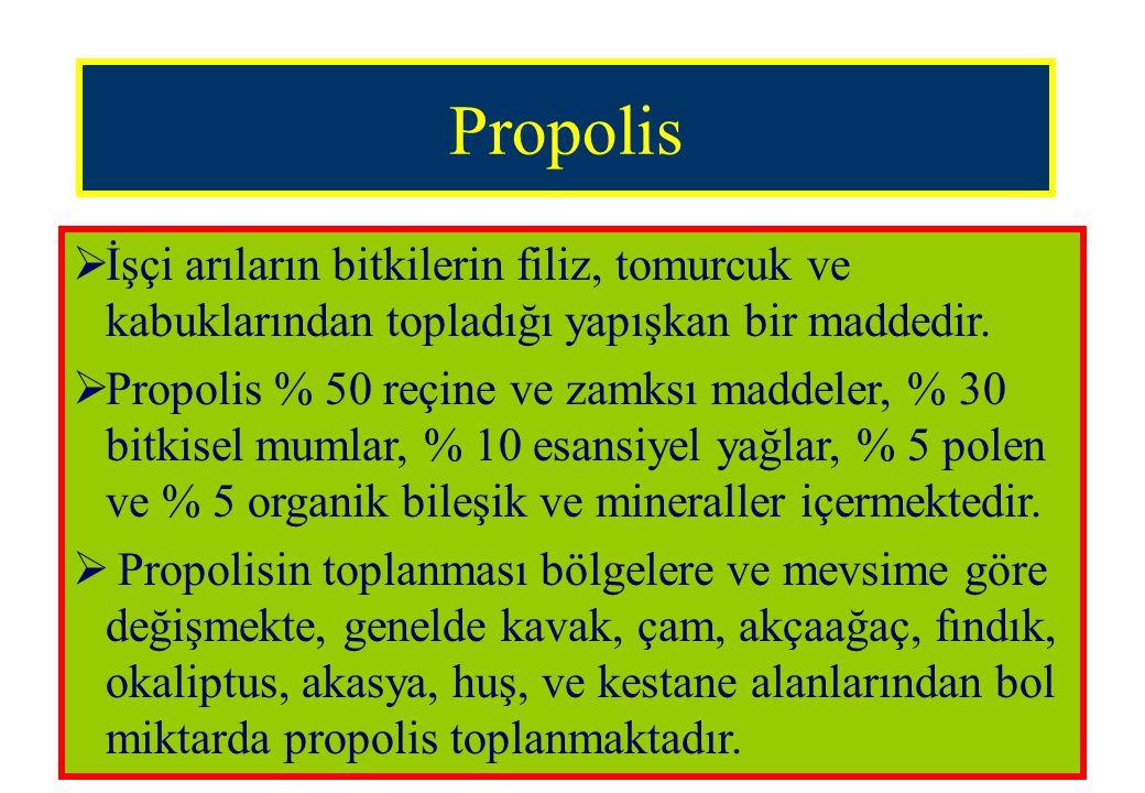 Propolis  İşçi arıların bitkilerin filiz, tomurcuk ve kabuklarından topladığı yapışkan bir maddedir.  Propolis % 50 reçine ve zamksı maddeler, % 30