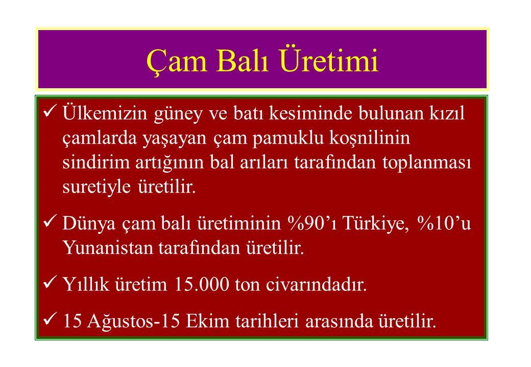 Bal Hasadı ve Pazara Sunumu  Petekli ballar doğrudan pazara sunulabileceği gibi çeşitli şekillerde ambalajlanarak da pazarlanabilir.