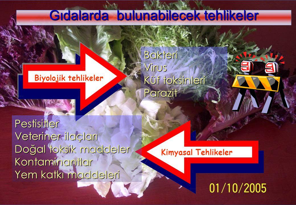 www.kolaylar.com Gıdalarda bulunabilecek tehlikeler Biyolojik tehlikeler Kimyasal Tehlikeler BakteriVirus Küf toksinleri Parazit Pestisitler Veteriner