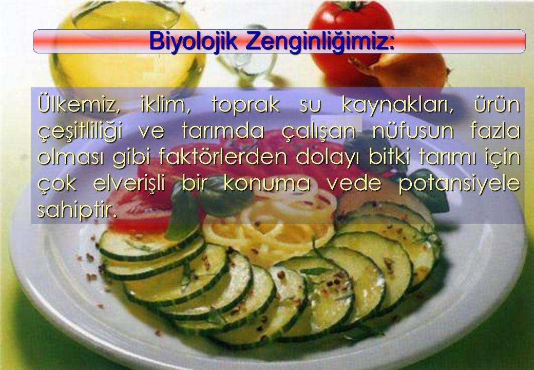 www.kolaylar.com Sebze ve meyveler; vitamin-mineral ve lif gereksiniminizi karşılamaktadır.