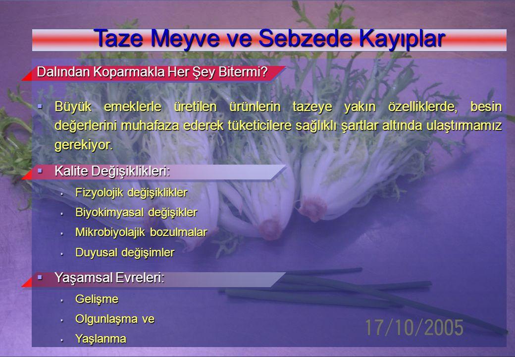 www.kolaylar.com Taze Meyve ve Sebzede Kayıplar Dalından Koparmakla Her Şey Bitermi?  Büyük emeklerle üretilen ürünlerin tazeye yakın özelliklerde, b