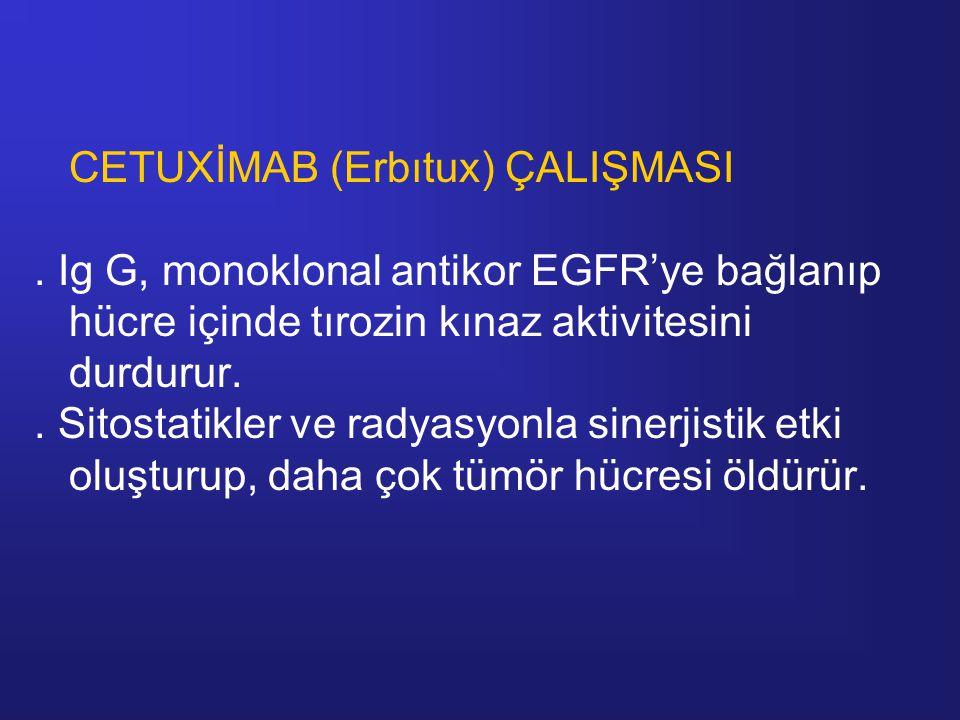 CETUXİMAB (Erbıtux) ÇALIŞMASI. Ig G, monoklonal antikor EGFR'ye bağlanıp hücre içinde tırozin kınaz aktivitesini durdurur.. Sitostatikler ve radyasyon