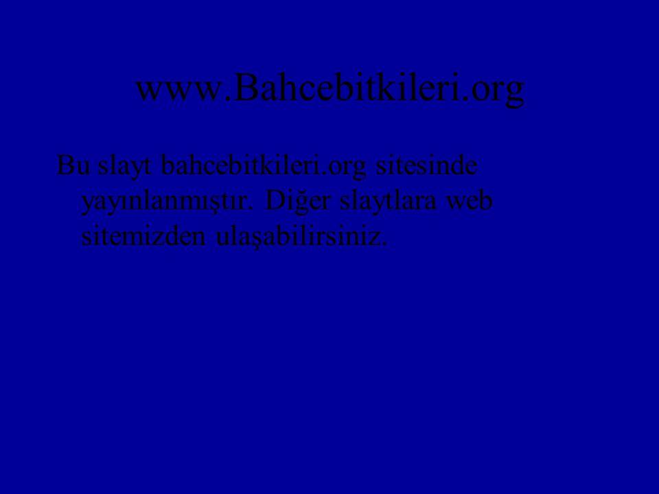www.Bahcebitkileri.org Bu slayt bahcebitkileri.org sitesinde yayınlanmıştır. Diğer slaytlara web sitemizden ulaşabilirsiniz.