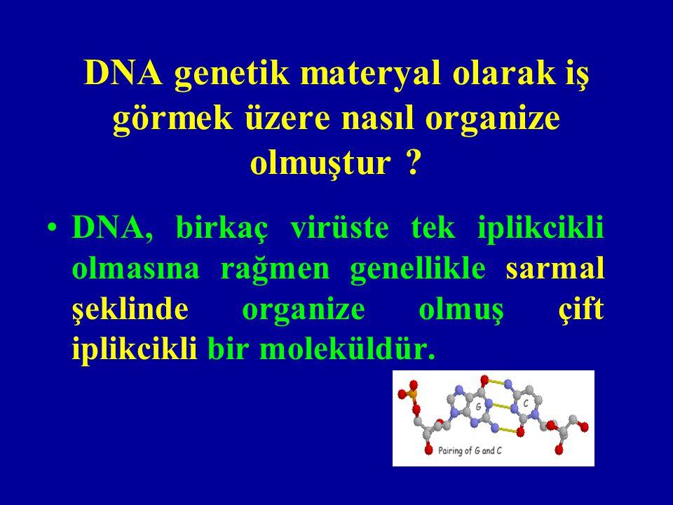 Gen nedir .•Gen, kalıtımın işlevsel birimidir.