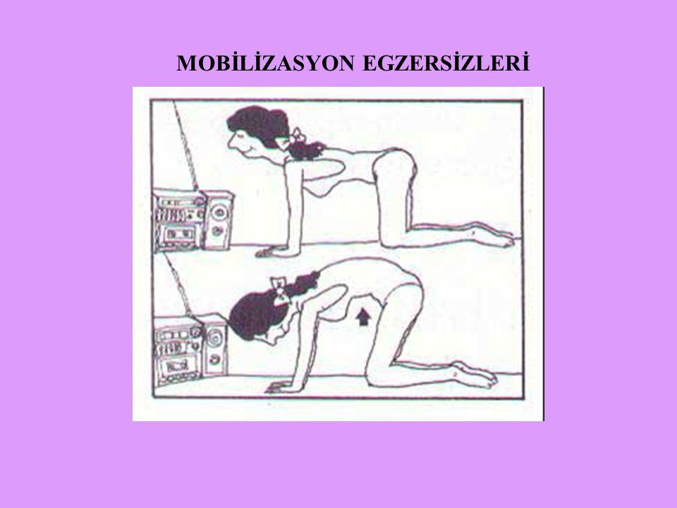 MOBİLİZASYON EGZERSİZLERİ