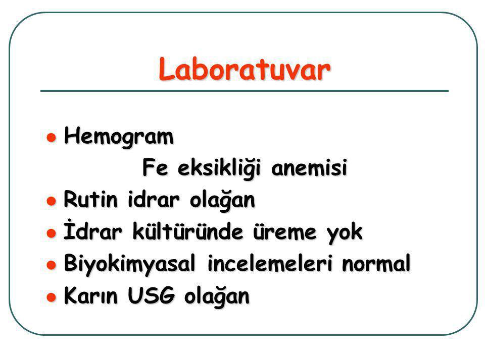 Laboratuvar  Hemogram Fe eksikliği anemisi  Rutin idrar olağan  İdrar kültüründe üreme yok  Biyokimyasal incelemeleri normal  Karın USG olağan