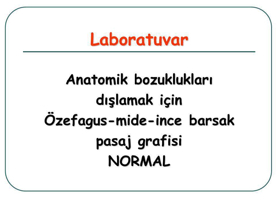 Laboratuvar Anatomik bozuklukları dışlamak için Özefagus-mide-ince barsak pasaj grafisi NORMAL