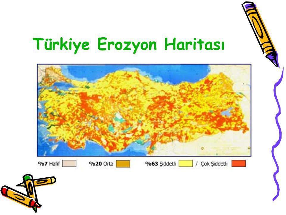 •Orman tahribatına son verilmesi, ağaçlandırmanın hızlandırılması ve orman yangınlarına karşı gerekli tedbirlerin alınması Su kaynaklarının kaybolması