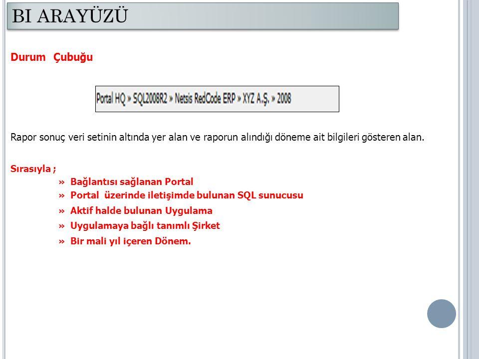 Liste Rapor Aşağıda liste rapora örnek olarak Stok Giriş/Çıkış analizi verilmiştir.