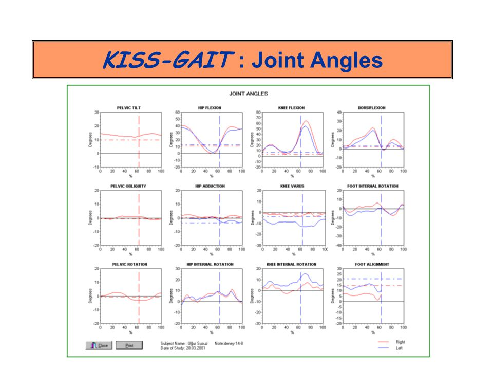 KISS-GAIT : Joint Angles