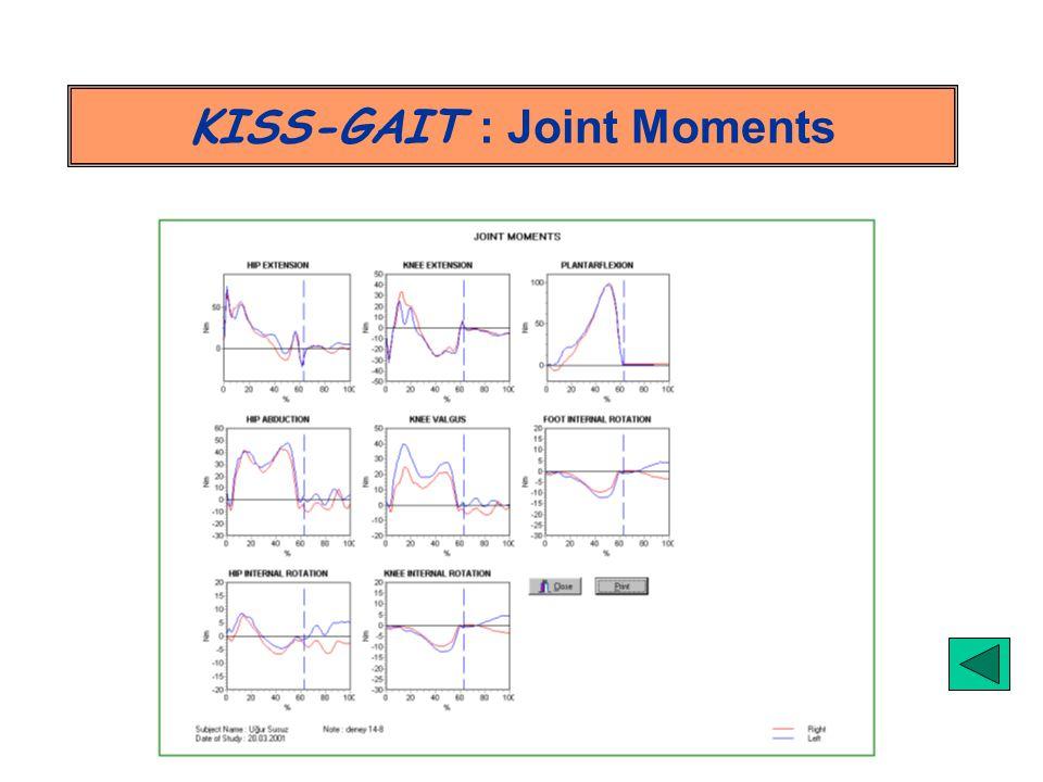 KISS-GAIT : Joint Moments