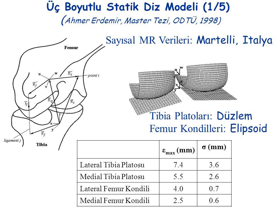 Üç Boyutlu Statik Diz Modeli (1/5) ( Ahmer Erdemir, Master Tezi, ODTÜ, 1998) Sayısal MR Verileri: Martelli, Italya Tibia Platoları: Düzlem Femur Kondi