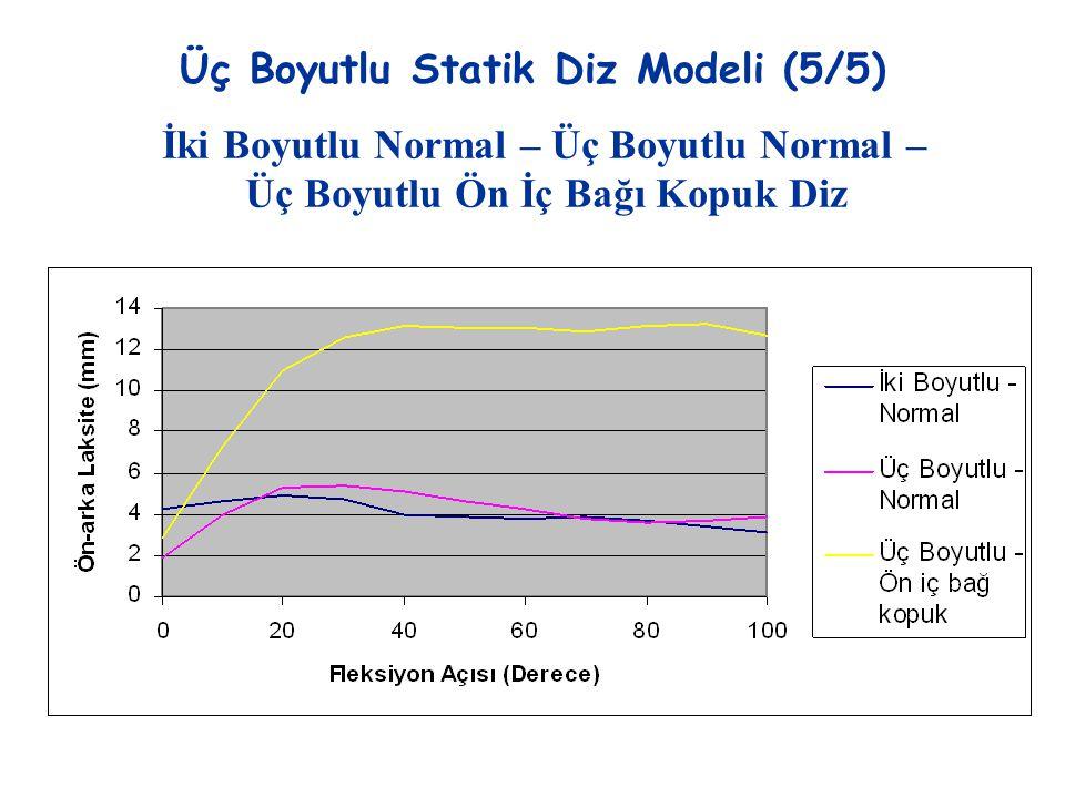 Üç Boyutlu Statik Diz Modeli (5/5) İki Boyutlu Normal – Üç Boyutlu Normal – Üç Boyutlu Ön İç Bağı Kopuk Diz