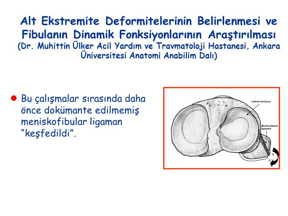 Alt Ekstremite Deformitelerinin Belirlenmesi ve Fibulanın Dinamik Fonksiyonlarının Araştırılması (Dr. Muhittin Ülker Acil Yardım ve Travmatoloji Hasta