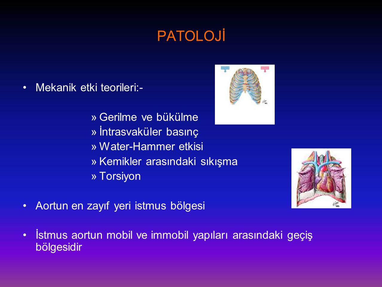 PATOLOJİ •Mekanik etki teorileri:- »Gerilme ve bükülme »İntrasvaküler basınç »Water-Hammer etkisi »Kemikler arasındaki sıkışma »Torsiyon •Aortun en za