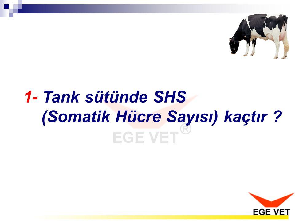 1- Tank sütünde SHS (Somatik Hücre Sayısı) kaçtır ?