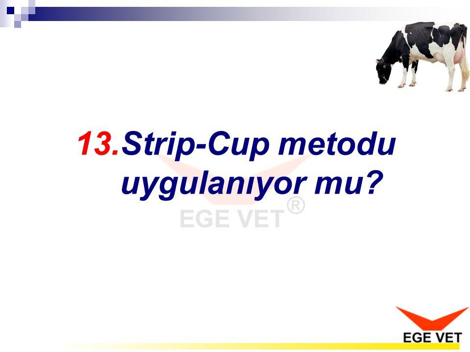 13.Strip-Cup metodu uygulanıyor mu?