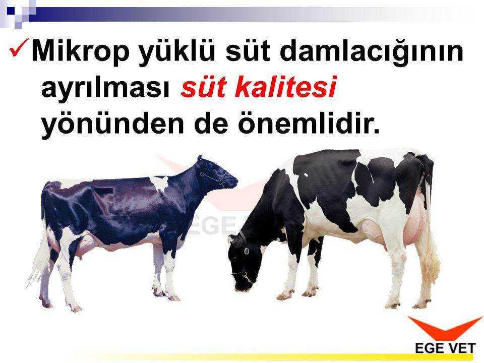  Mikrop yüklü süt damlacığının ayrılması süt kalitesi yönünden de önemlidir.