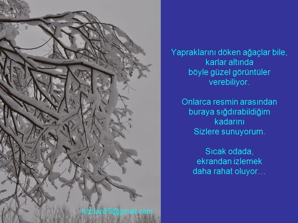 Yapraklarını döken ağaçlar bile, karlar altında böyle güzel görüntüler verebiliyor. Onlarca resmin arasından buraya sığdırabildiğim kadarını Sizlere s