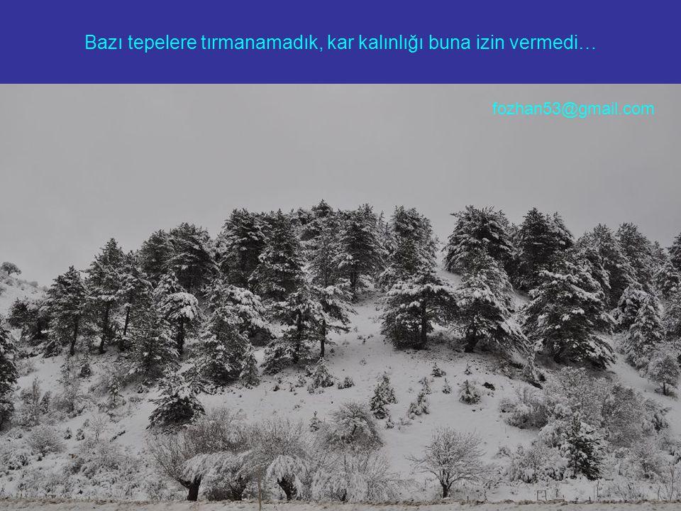 Bazı tepelere tırmanamadık, kar kalınlığı buna izin vermedi… fozhan53@gmail.com