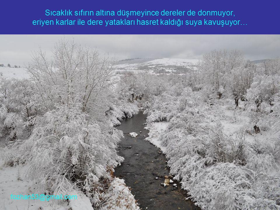 Sıcaklık sıfırın altına düşmeyince dereler de donmuyor, eriyen karlar ile dere yatakları hasret kaldığı suya kavuşuyor… fozhan53@gmail.com