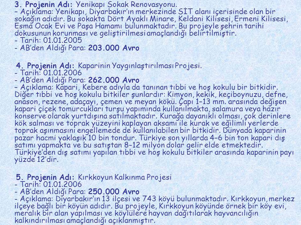 3. Projenin Adı: Yenikapı Sokak Renovasyonu. – Açıklama: Yenikapı, Diyarbakır'ın merkezinde SİT alanı içerisinde olan bir sokağın adıdır. Bu sokakta D