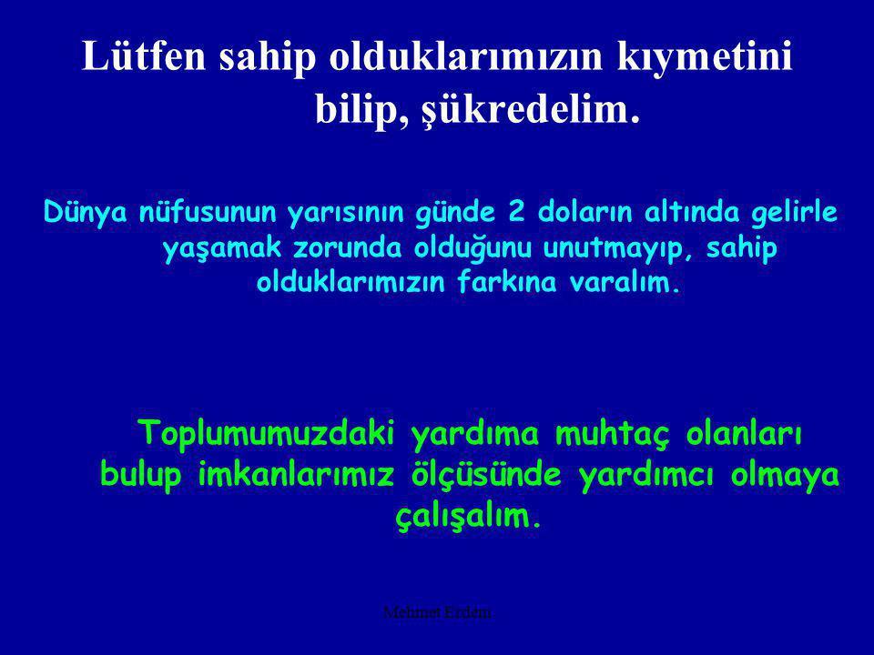 Mehmet Erdem 28 Nisan 2002 tarihinde Zonguldak'ta bir anne zayıf düştüğü için çocuğunu emziremiyor. İşsiz olduğu için babası mama alamıyor. Yeşil Kart
