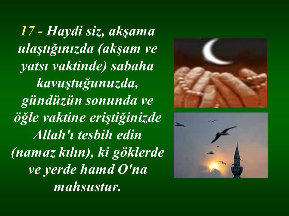 17 - Haydi siz, akşama ulaştığınızda (akşam ve yatsı vaktinde) sabaha kavuştuğunuzda, gündüzün sonunda ve öğle vaktine eriştiğinizde Allah'ı tesbih ed