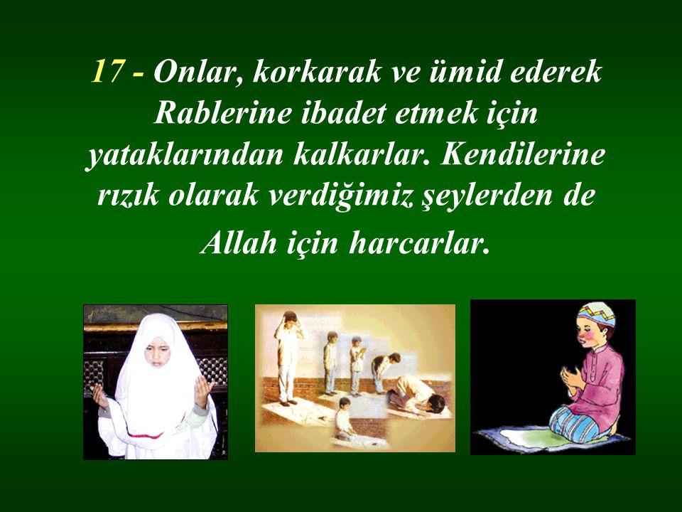 17 - Onlar, korkarak ve ümid ederek Rablerine ibadet etmek için yataklarından kalkarlar. Kendilerine rızık olarak verdiğimiz şeylerden de Allah için h