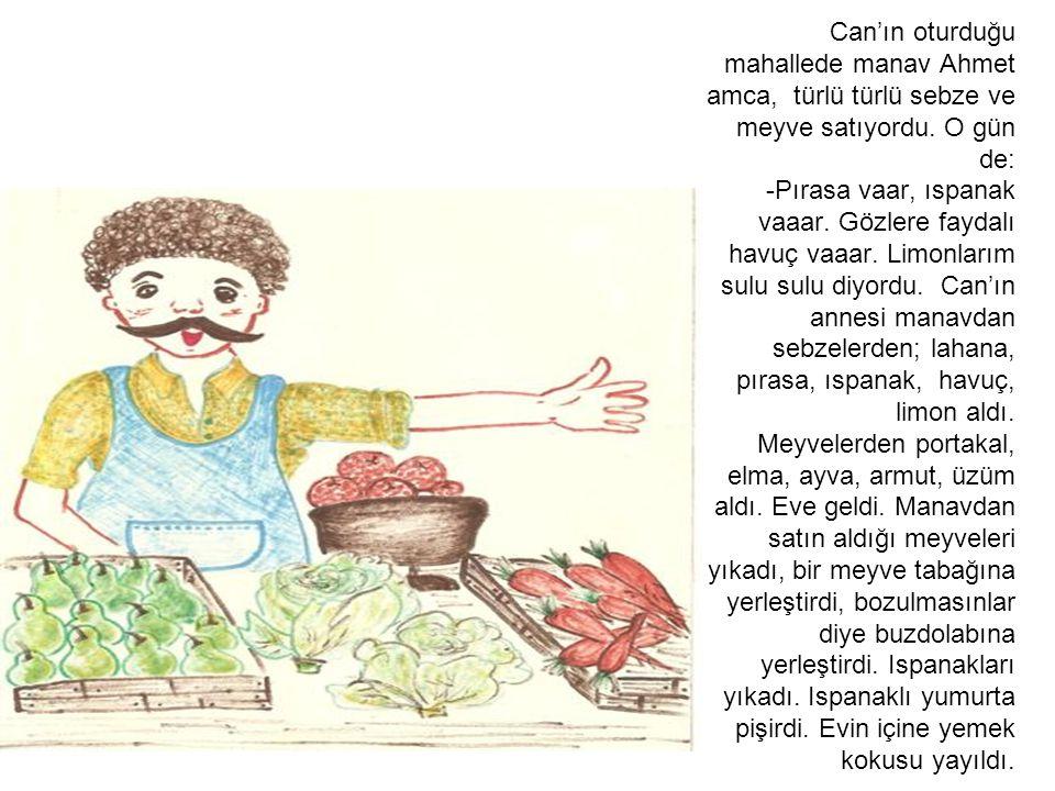 Can'ın oturduğu mahallede manav Ahmet amca, türlü türlü sebze ve meyve satıyordu. O gün de: -Pırasa vaar, ıspanak vaaar. Gözlere faydalı havuç vaaar.