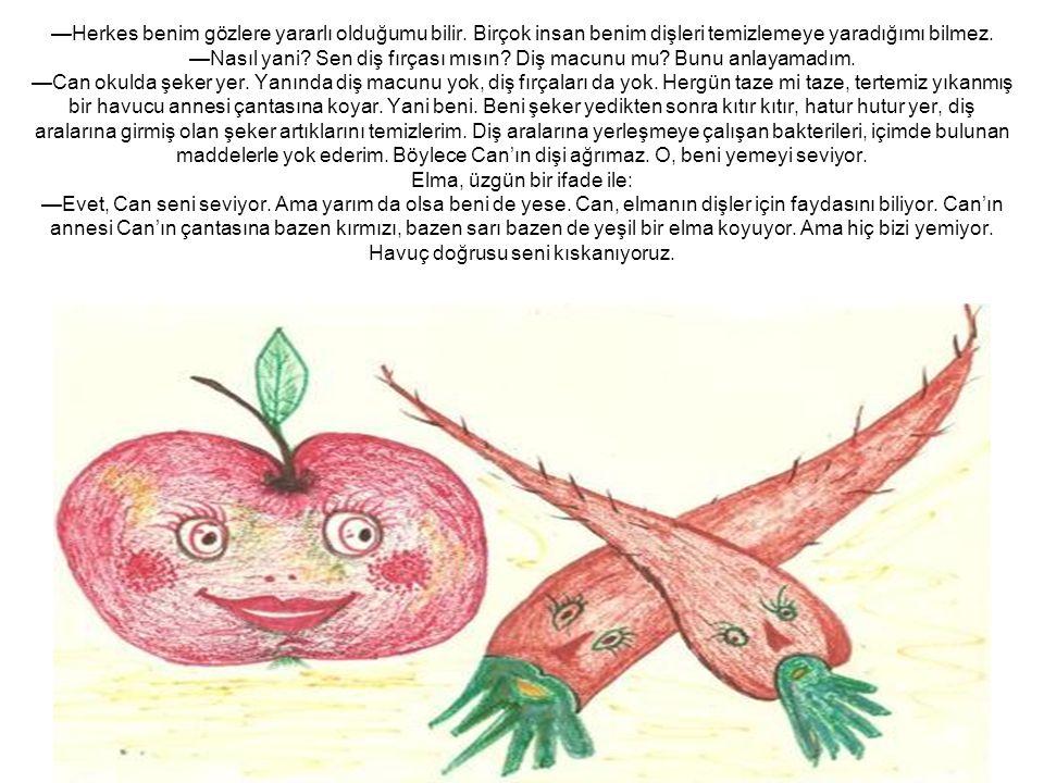 Lahana, pırasa ve ıspanak: —Durun arkadaşlar; asıl biz sizi kıskanıyoruz. Can sebze sevmiyor.