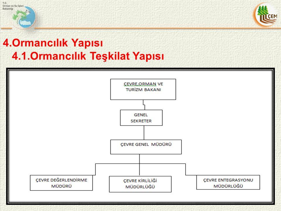 4.Ormancılık Yapısı 4.1.Ormancılık Teşkilat Yapısı 11